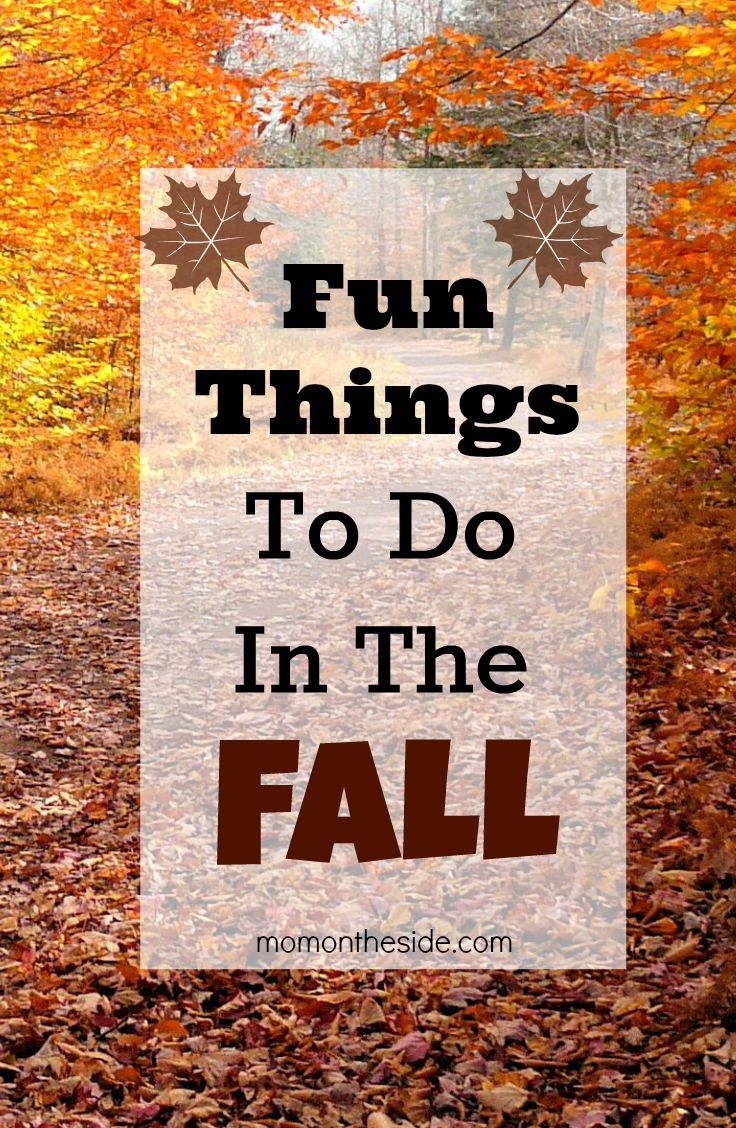 Fun Things to do in the Fall with the kids! The Fall Activities can be done at home and around town.