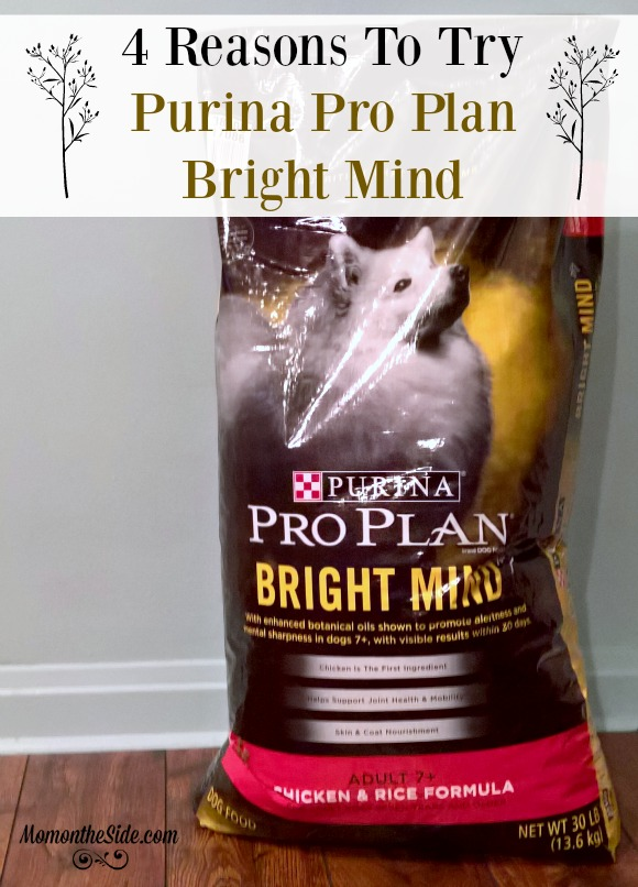 4 Reasons To Try Purina Pro Plan Bright Mind