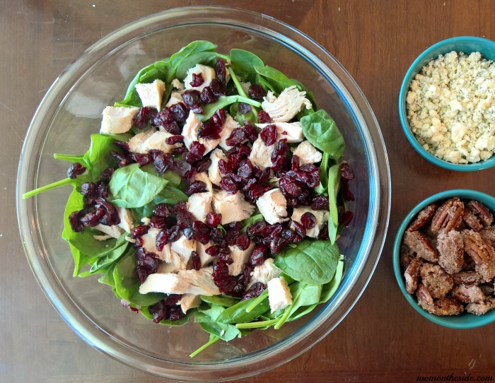 Cranberry Turkey Salad with Homemade Cranberry Vinaigrette
