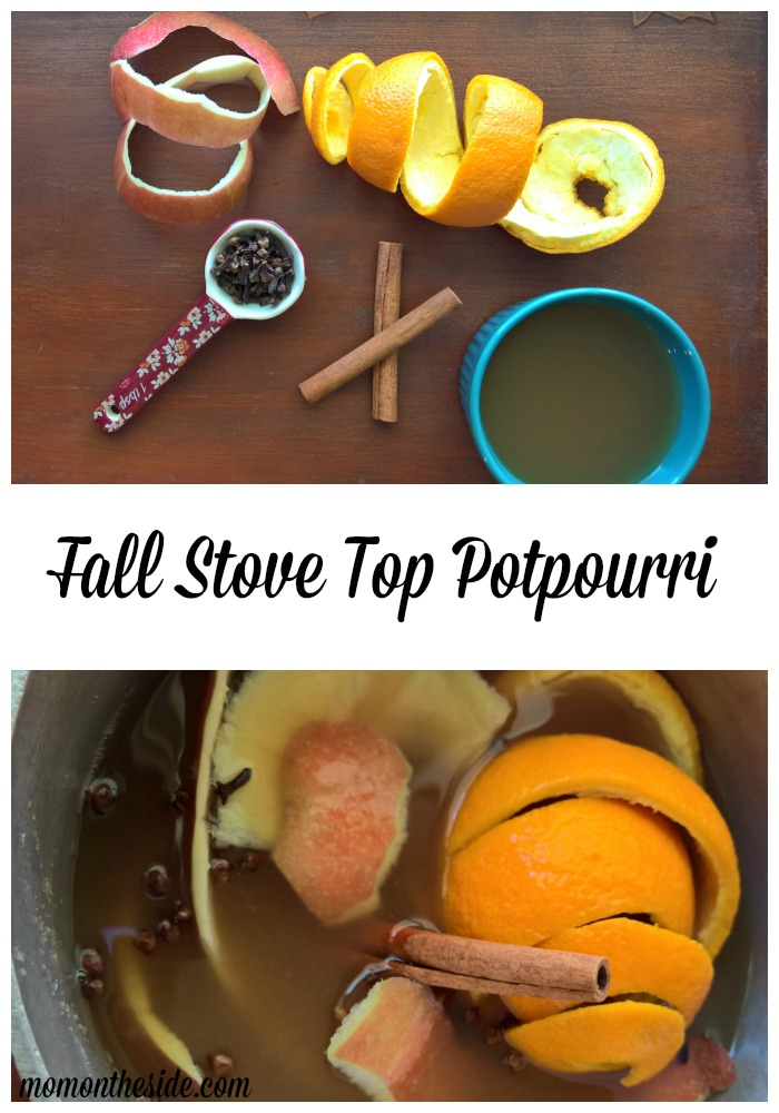Let the smells of the season fill your home with Fall Stove Top Potpourri.