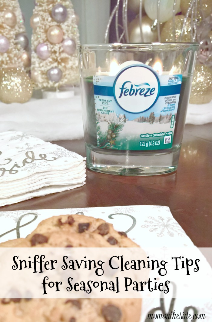 Sniffer Saving Cleaning Tips for Seasonal Parties