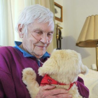 Joy For All This Holiday Season with Companion Pets
