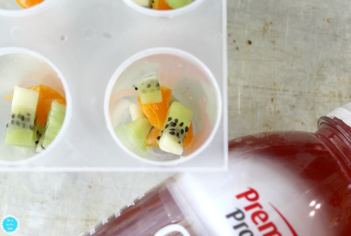 Fruit Protein Pops
