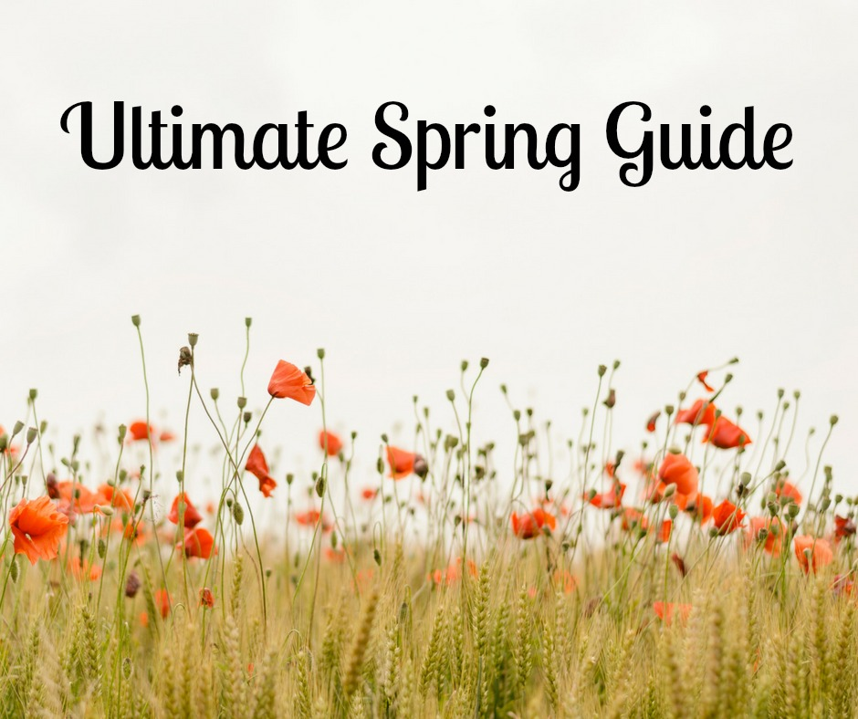 Ultimate Spring Guide of Recipes, Crafts, and More