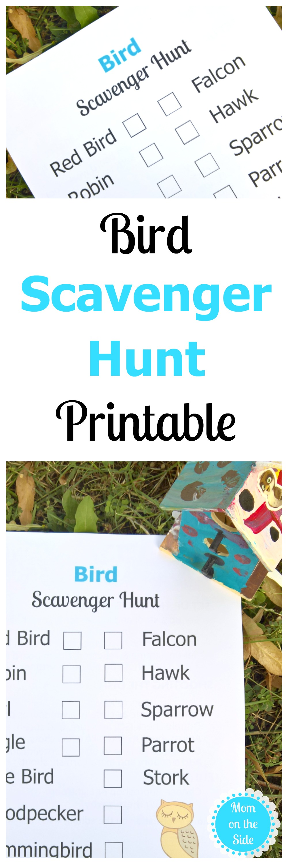 Printable Bird Scavenger Hunt Clues