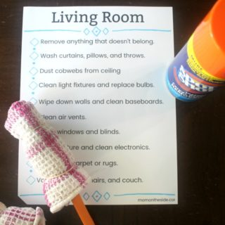 5 Living Room Cleaning Hacks + Check List