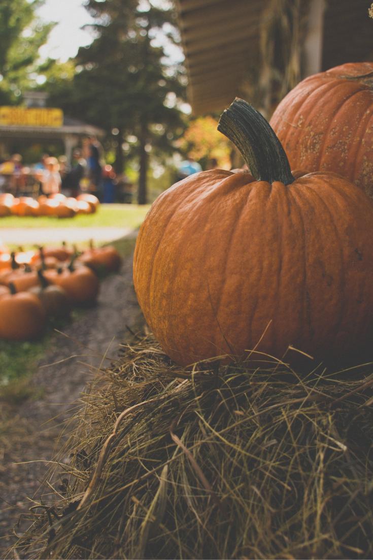 pumpking carving tips