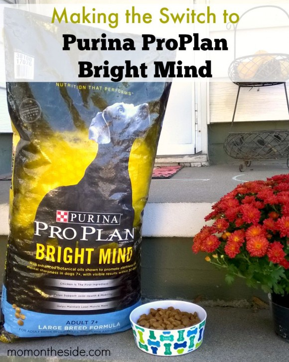 Making the Switch to Purina ProPlan Bright Mind