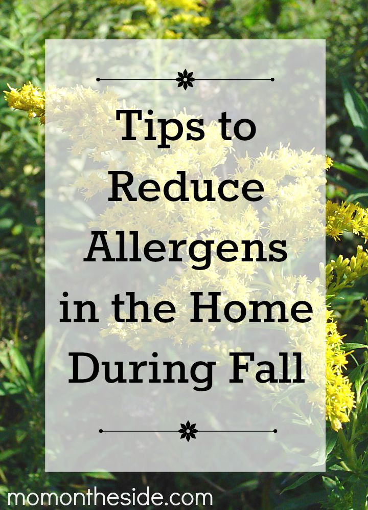 Tips to Reduce Allergens in the Home During Fall