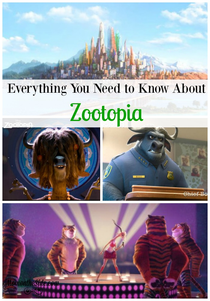 Everything About Zootopia