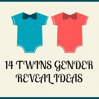 14 TWINS GENDER REVEAL IDEAS