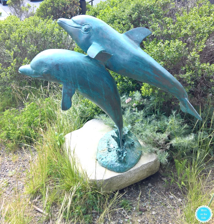 Dolphin Statue at The Marine Mammal Center