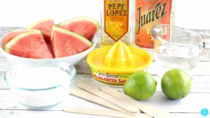 Ingredients for Boozy Watermelon Pops