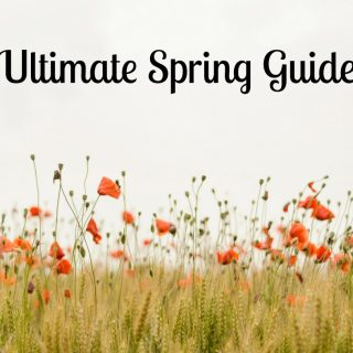 Ultimate Spring Guide: Recipes, Crafts, Activities, Gardening, and More