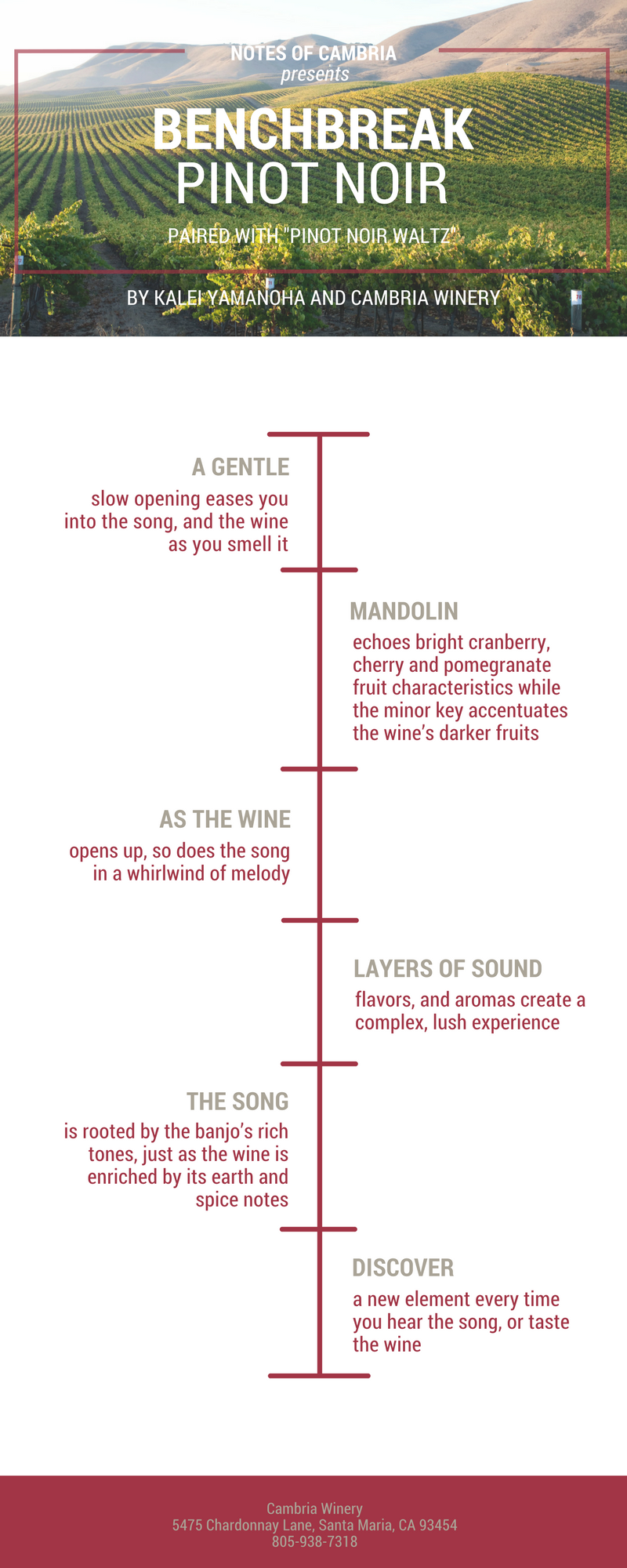Red Wine Timeline and Notes of Cambria Wine Playlist