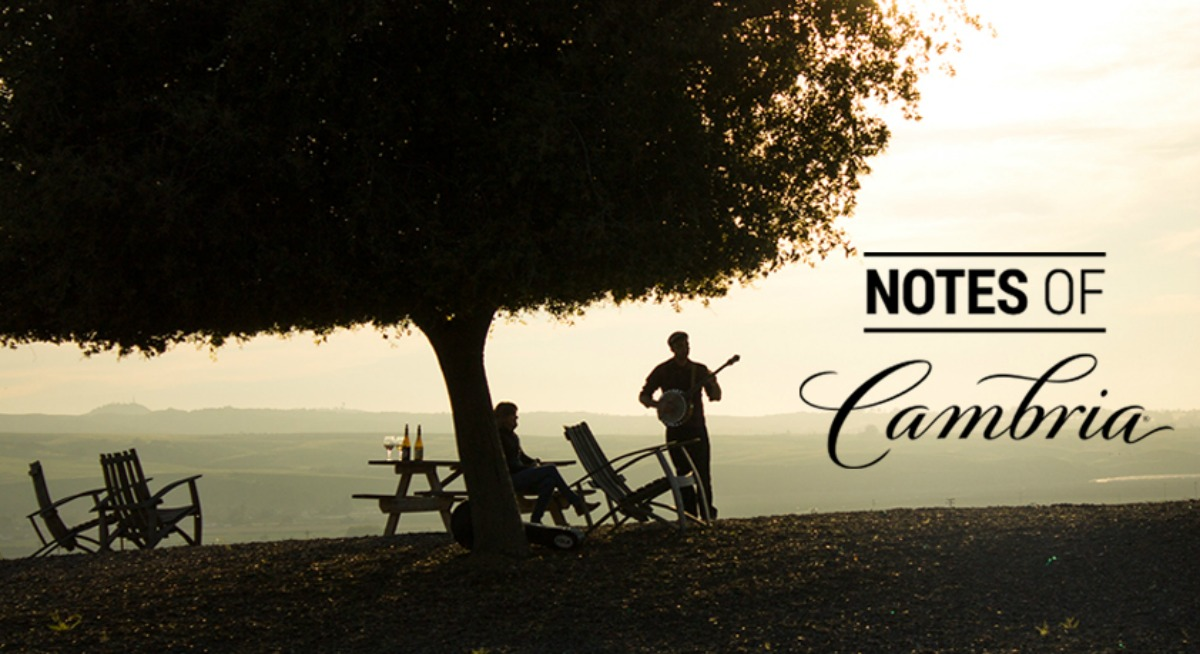 Notes from Cambria Wine Playlist