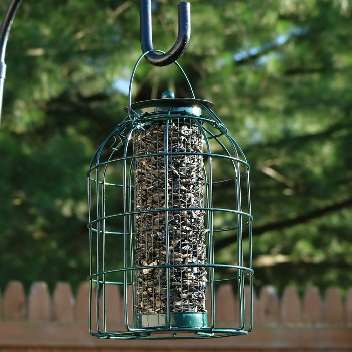 Bird Feeder Garden Lover
