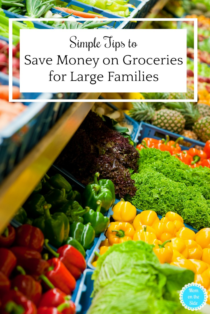 With simple planning, you can save money on groceries for large families and make keeping to your budget easier on you.