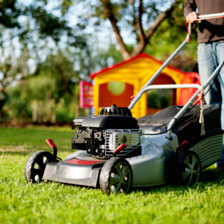 Yard Maintenance and Gardening Skills for Teens