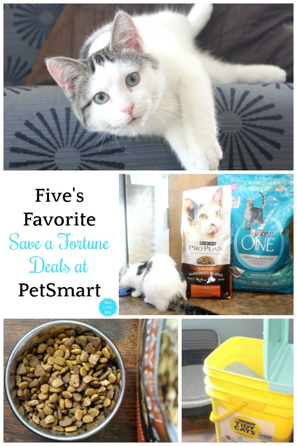 3 of Five's Favorite Save a Fortune Deals at PetSmart
