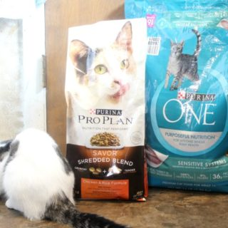 Save a Fortune Deals at Pet Smart - Purina One ProPlan