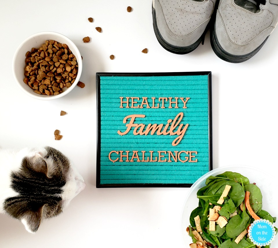 Healthy Family Challenge Ideas for Family and Pets